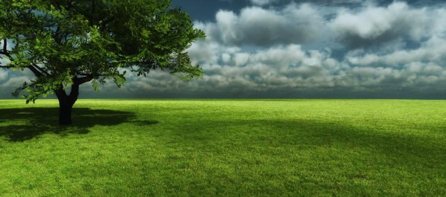 """نزوع الإنسان نحو الله والعالم """"نظريّة الجعل الفطريّ"""""""